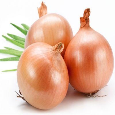 Onions Viet Nam